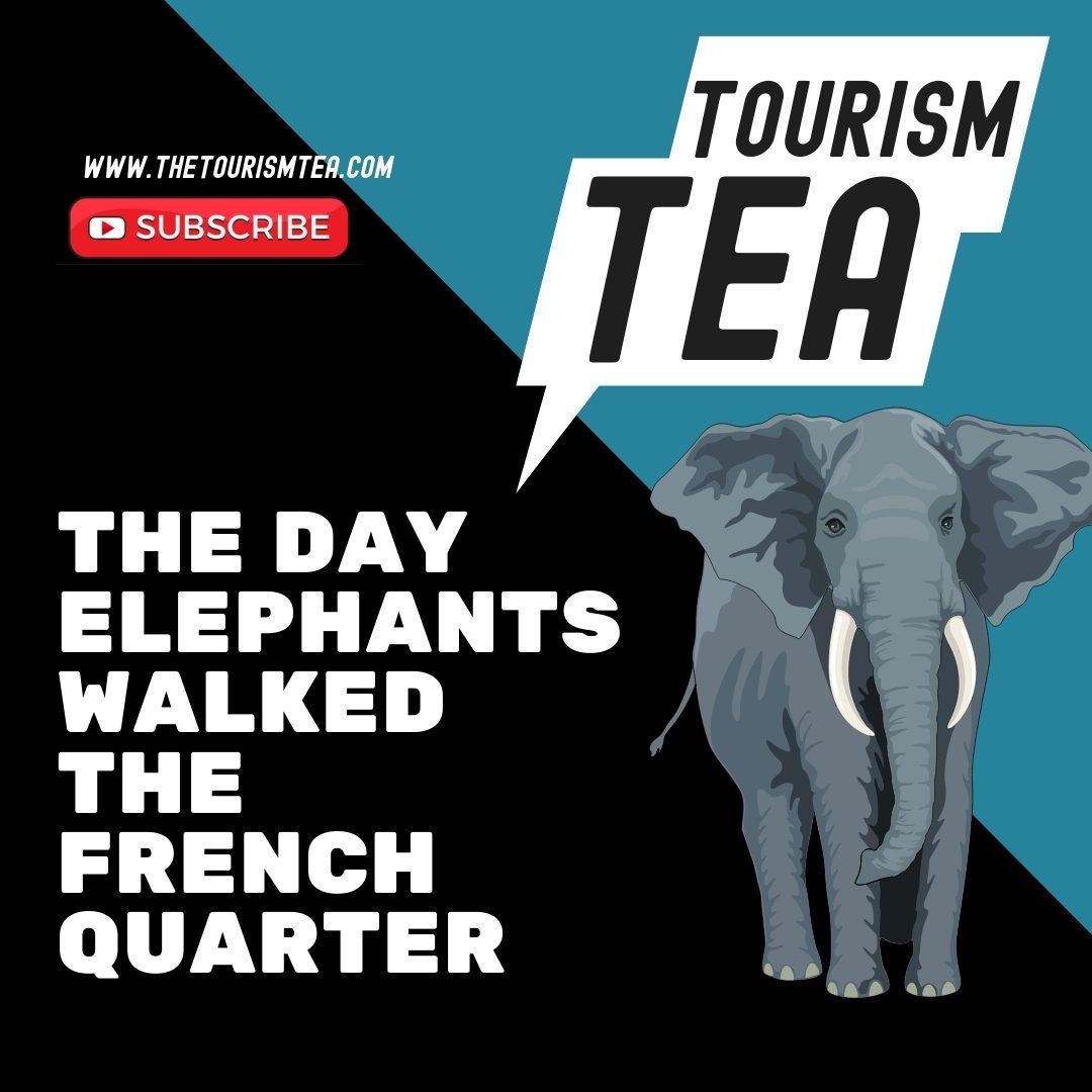 Tourism Tea | Guerilla Marketing